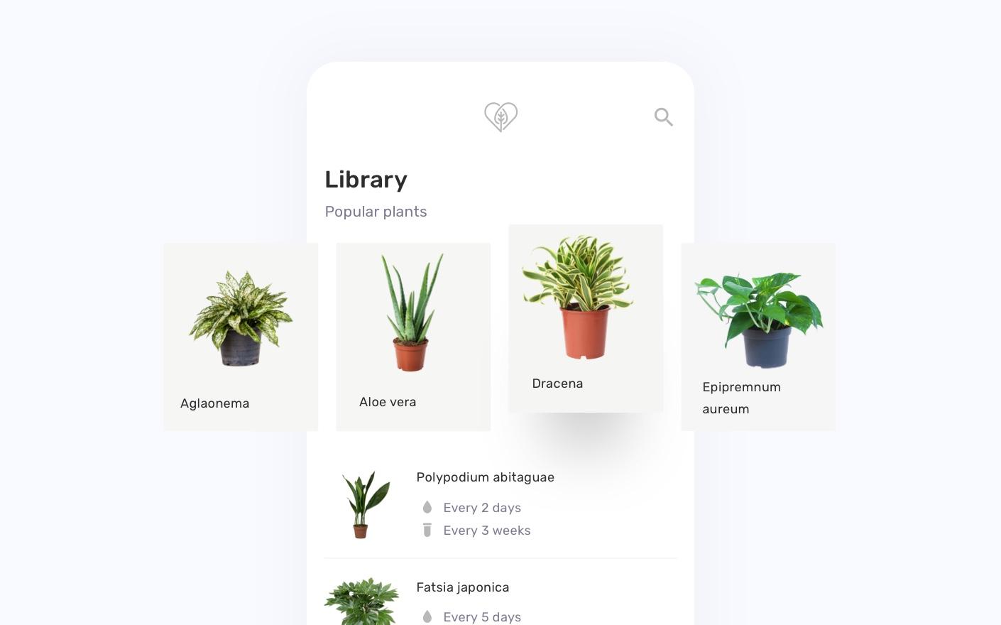 Planter - slide 3